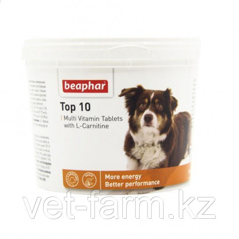 BEAPHAR TOP 10 For Dogs ТОП 10 Для Собак (180 Табл)