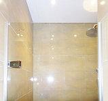 Душевая дверь в нишу GuteWetter Trend Door GK-861 левая 75 см стекло бесцветное Two, фурнитура хром, фото 4