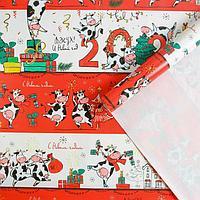 Бумага упаковочная глянцевая «Веселушки», 70 × 100 см