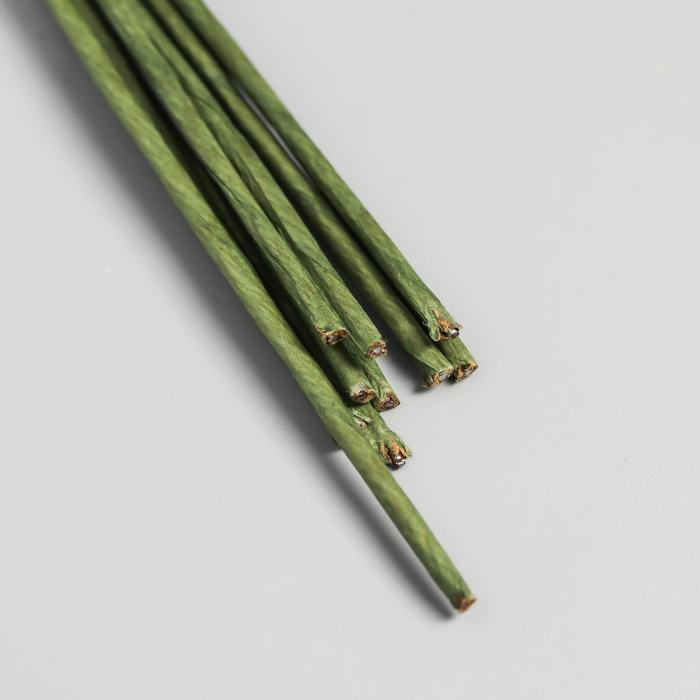 Набор проволоки для флористики d-2 мм, 60 см, 10 шт, зелёный - фото 1