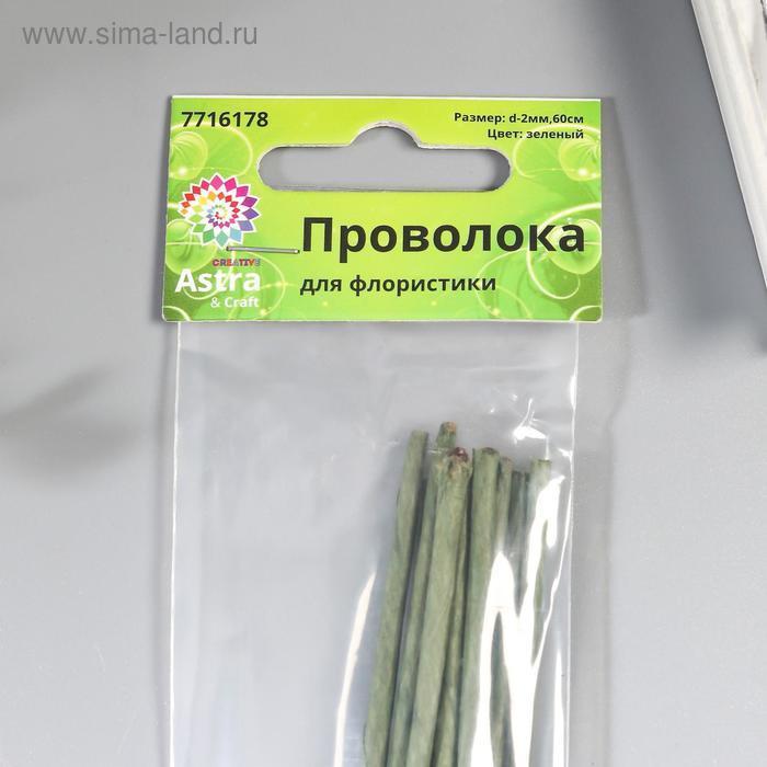 Набор проволоки для флористики d-2 мм, 60 см, 10 шт, зелёный - фото 2