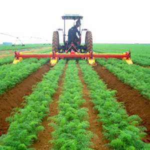 сельскохозяйственные услуги, общее