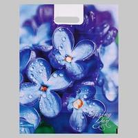 Пакет 'Весенний день', полиэтиленовый с вырубной ручкой, 38х47 см, 60 мкм (комплект из 25 шт.)