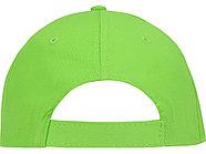 Бейсболка Detroit 6-ти панельная, зеленое яблоко, фото 3