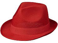 Лента для шляпы Trilby, красный, фото 3