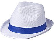 Лента для шляпы Trilby, синий, фото 2