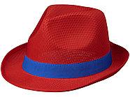 Лента для шляпы Trilby, синий, фото 3