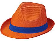 Лента для шляпы Trilby, синий, фото 4