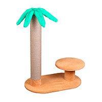 Когтеточка - лежанка с пальмой 7 Котиков