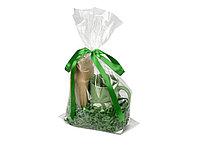Подарочный набор Tea Cup с чаем, зеленый