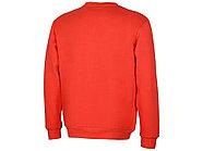 Толстовка Rome мужская, красный, фото 2