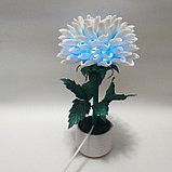 Светильник малыш. Хризантема.  Creativ 079, фото 3