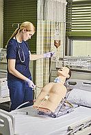 Модель туловища с имитацией верхних дыхательных путей и желудка