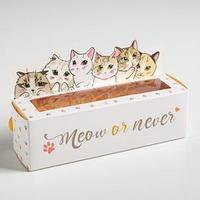 Коробочка для макарун Meow or never, 18 х 5,5 х 5,5 см (комплект из 10 шт.)