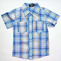 Рубашка голубая в клетку (4-5 лет)