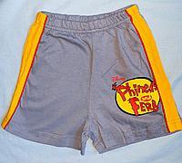 Шорты трикотажные серо-желтые Phineas&ferb (6-7 лет)