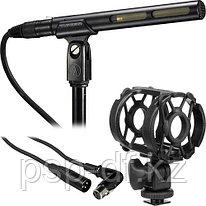 Выносной AT875R Short Condenser Shotgun