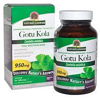 Готу кола, Nature's Answer, 950 мг, 90 вегетарианских капсул