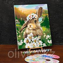 Картина по номерам на холсте с подрамником «Заяц» 40х50 см