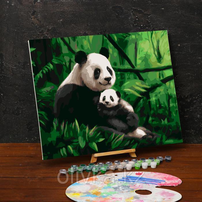 Картина по номерам на холсте с подрамником «Панды. Мама и малыш» 40х50 см