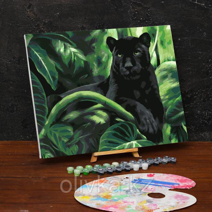 Картина по номерам на холсте с подрамником «Пантера» 40х50 см