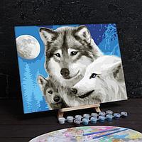 Роспись по номерам без подрамника «Волки», 40 х 30 см