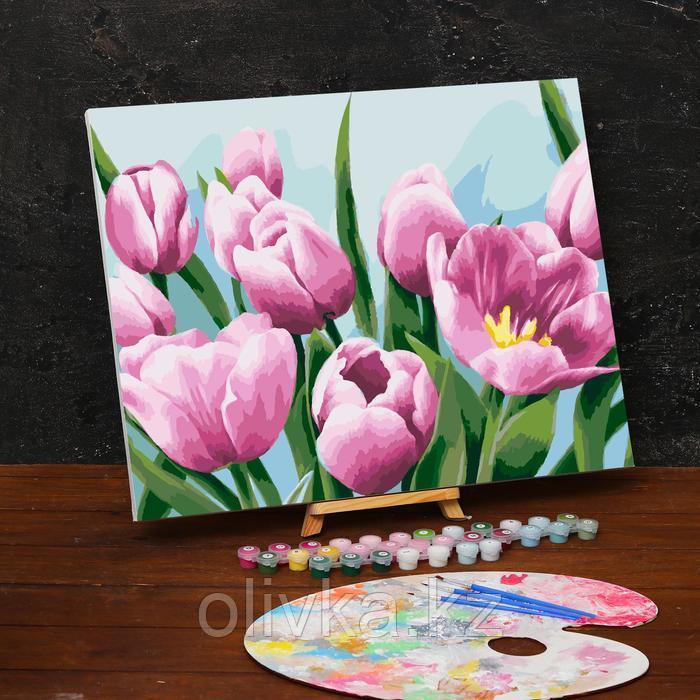Картина по номерам на холсте с подрамником «Тюльпаны» 40х50 см