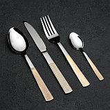 Набор столовых приборов «Реиджо», 24 предмета, в кейсе, фото 2