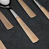 Набор столовых приборов «Реиджо», 24 предмета, в кейсе, фото 5