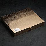 Набор столовых приборов «Реиджо», 24 предмета, в кейсе, фото 8