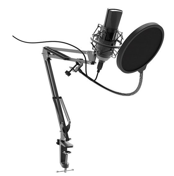 Студийный микрофон Ritmix RDM-180 черный