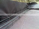 Профилированная гидроизоляция PLANTER standard 2*20, фото 5