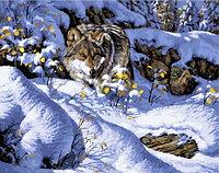 "Картина по номерам ""Волк на охоте"", 40х50 см"