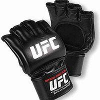 Шингарт UFC, фото 1