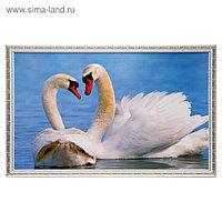 """Картина """"Лебеди"""" 67х107 см рамка МИКС"""