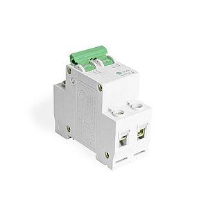Автоматический выключатель реечный iPower ВА47-63 2Р 50А