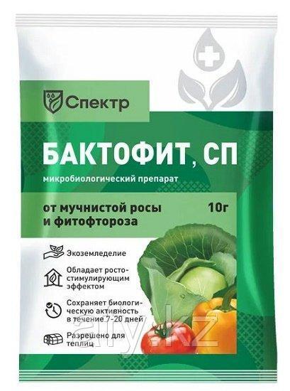 Бактофит 20 гр