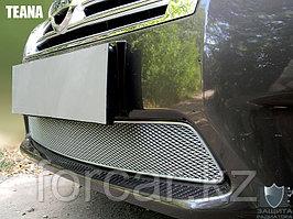 Защита радиатора Nissan Teana II 2008-2014 black