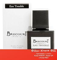 Brecourt Eau Trouble парфюмированная вода объем 100 мл тестер(ОРИГИНАЛ)