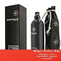 Montale Steam Aoud парфюмированная вода объем 100 мл(ОРИГИНАЛ)
