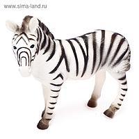 Фигурка животного «Бурчеллова зебра», длина 24 см
