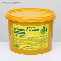 Корм для рыб Spirulina Flakes со спирулиной, растительный, в виде хлопьев, 2 кг