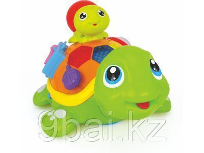 Развивающая игрушка Huile toys 868 Веселые Черепашата