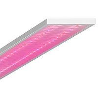 Светодиодный фитосветильник Geniled ЛПО Agro (Микропризма, 90°; 40Вт; 110мкмоль/с)