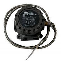 Сдвоенный капиллярный термостат Capstat CT-FL/2C/B/X/Dual