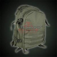 Тактический рюкзак Westrooper Assault Pack WTP50-1012B (Olive), фото 1
