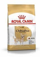 Royal Canin Chihuahua Adult сухой корм для собак породы чихуахуа
