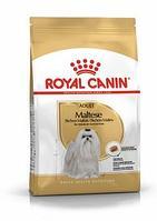 Royal Canin Maltese Adult сухой корм для собак породы мальтийская болонка
