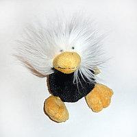 Черная волосатая птичка, 15см