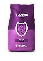 Фланкер IT (диметоморф 50%) производитель Manica для BASF, 1 кг